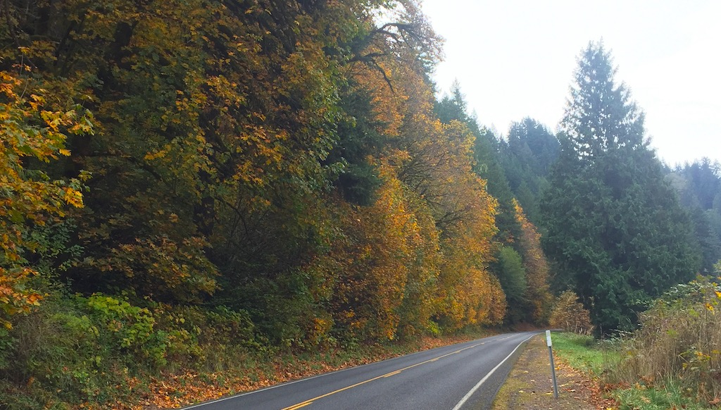 Colors on the Alsea