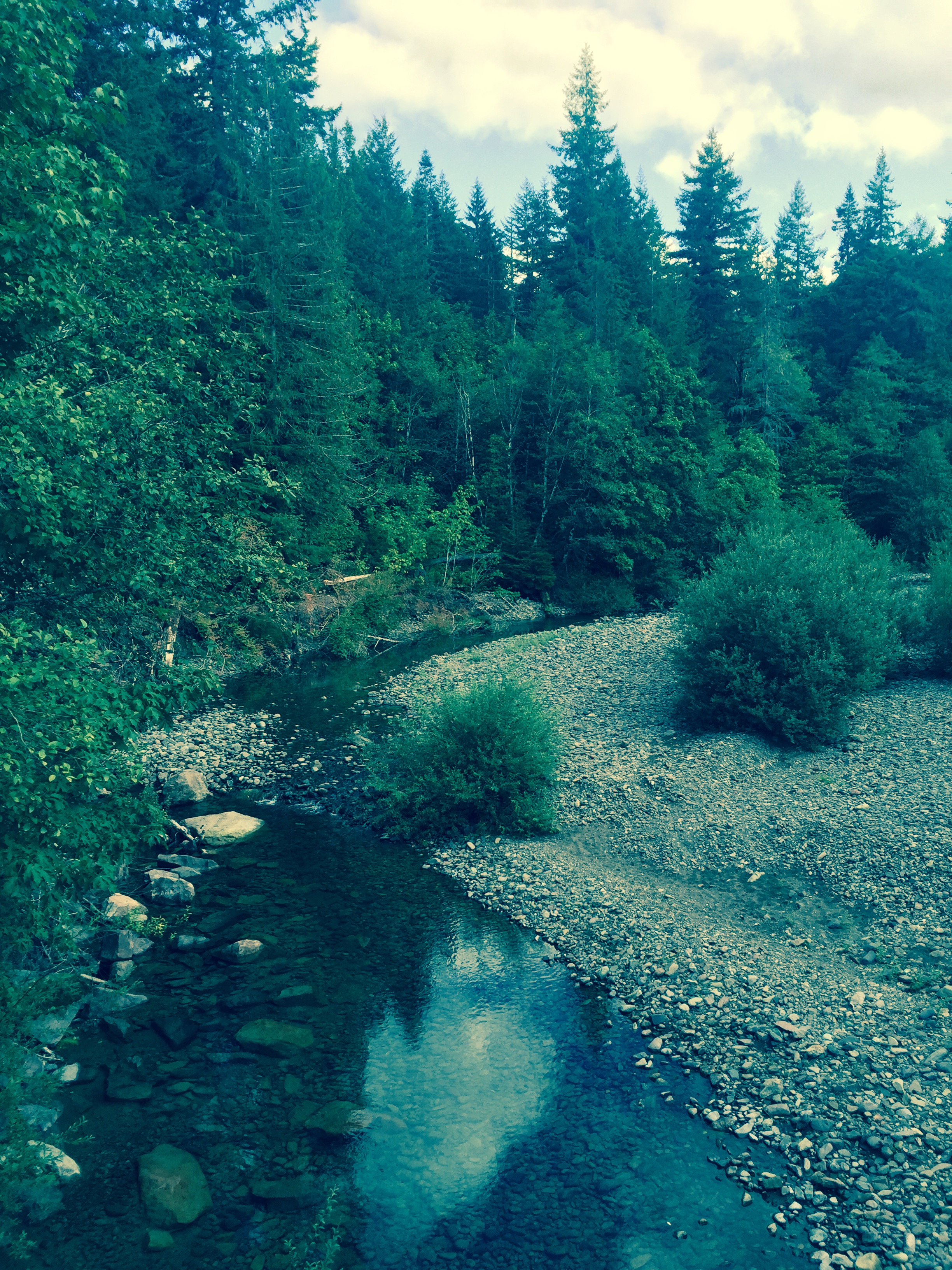 Headwaters of the South Santiam