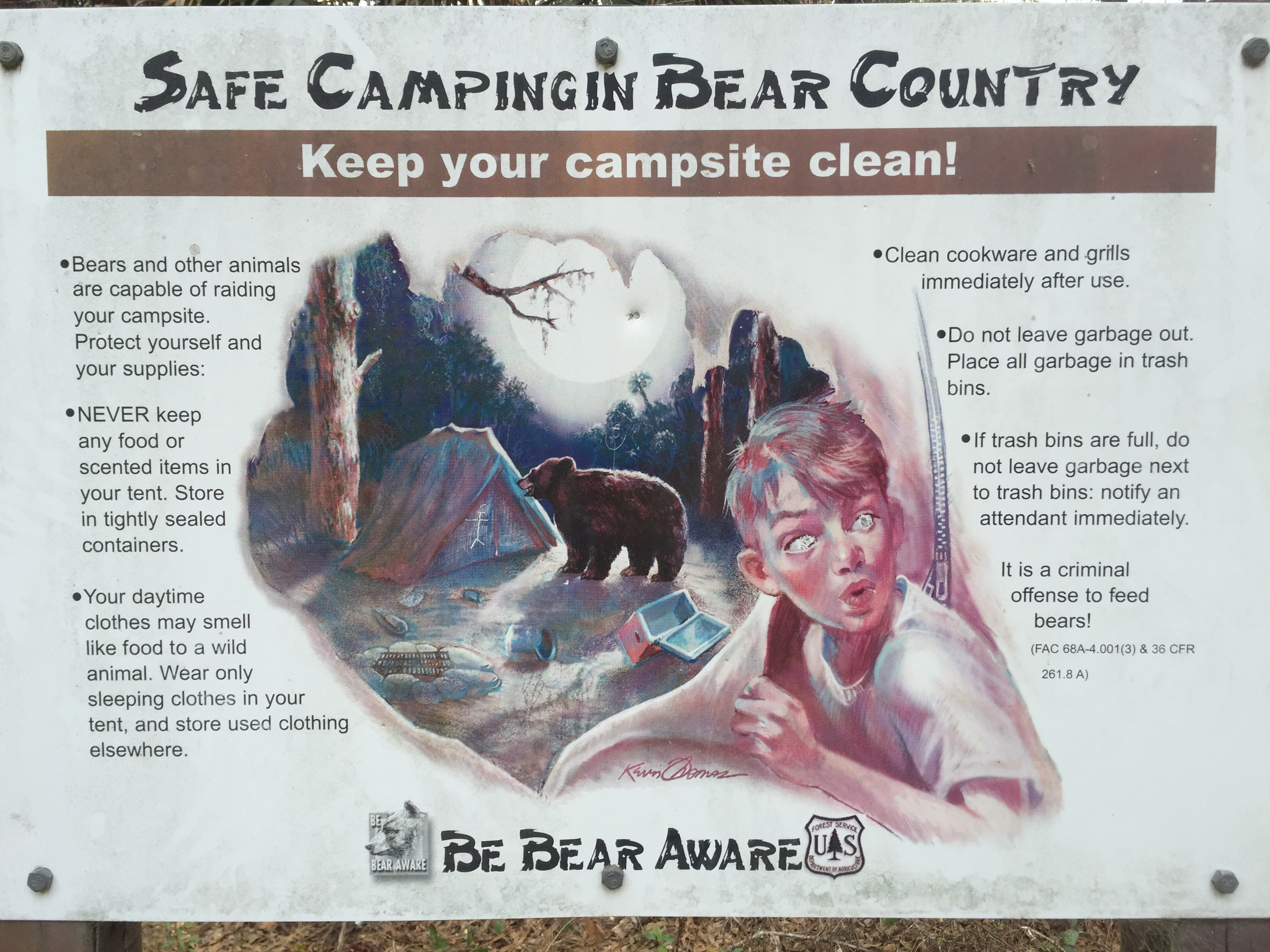 Bear aware in the Ocala National Forest.