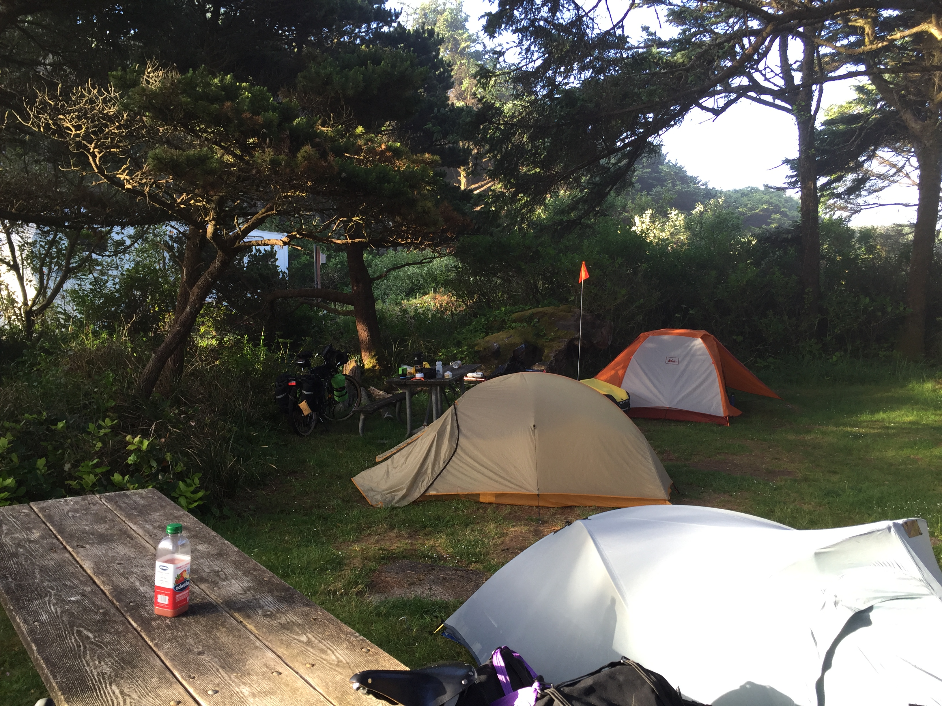 Campsite at Beachside SP
