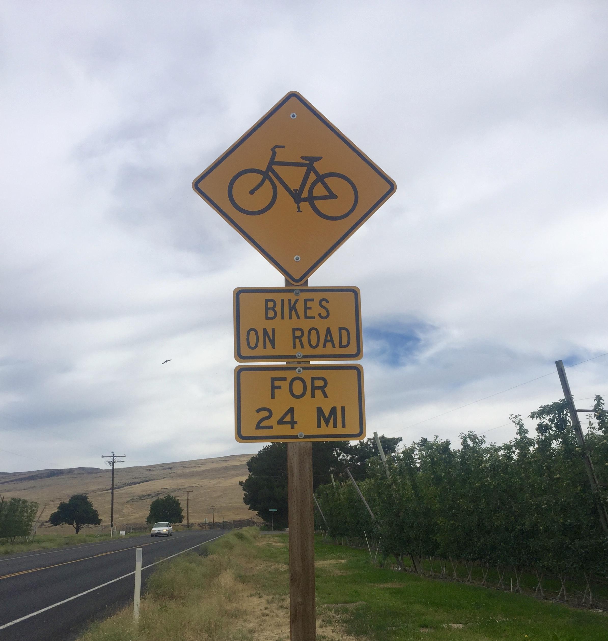 Bikes on road