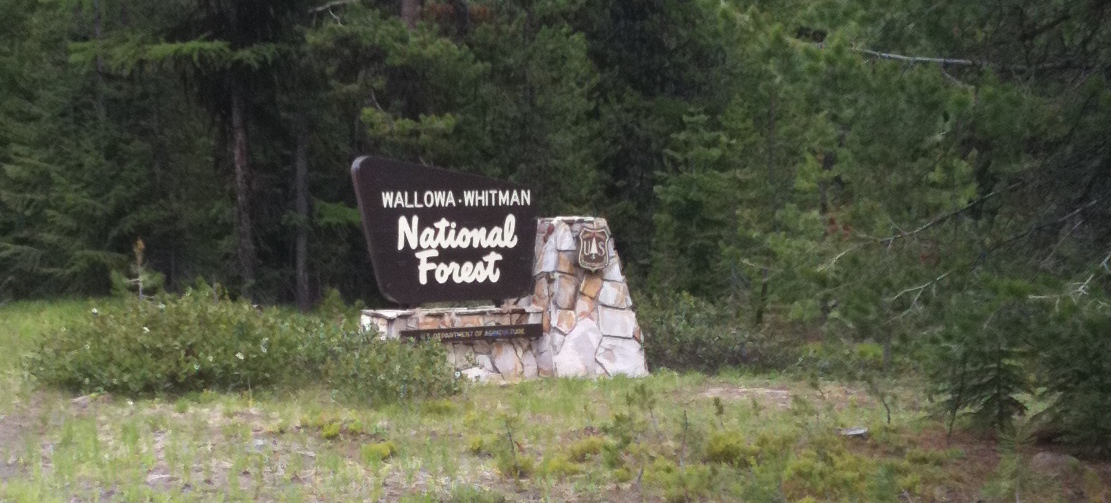 Wallowa Whitman National Forest
