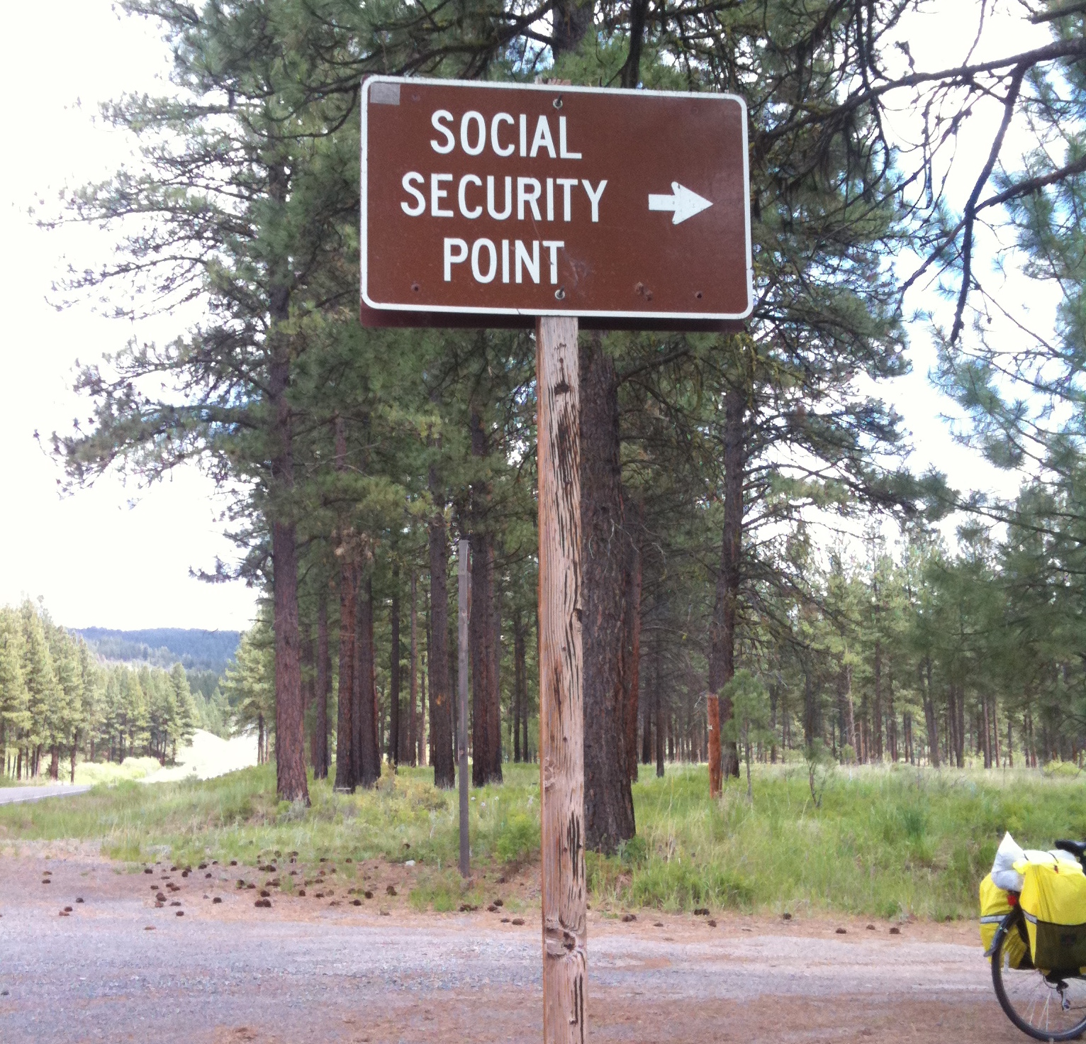 Social Security point