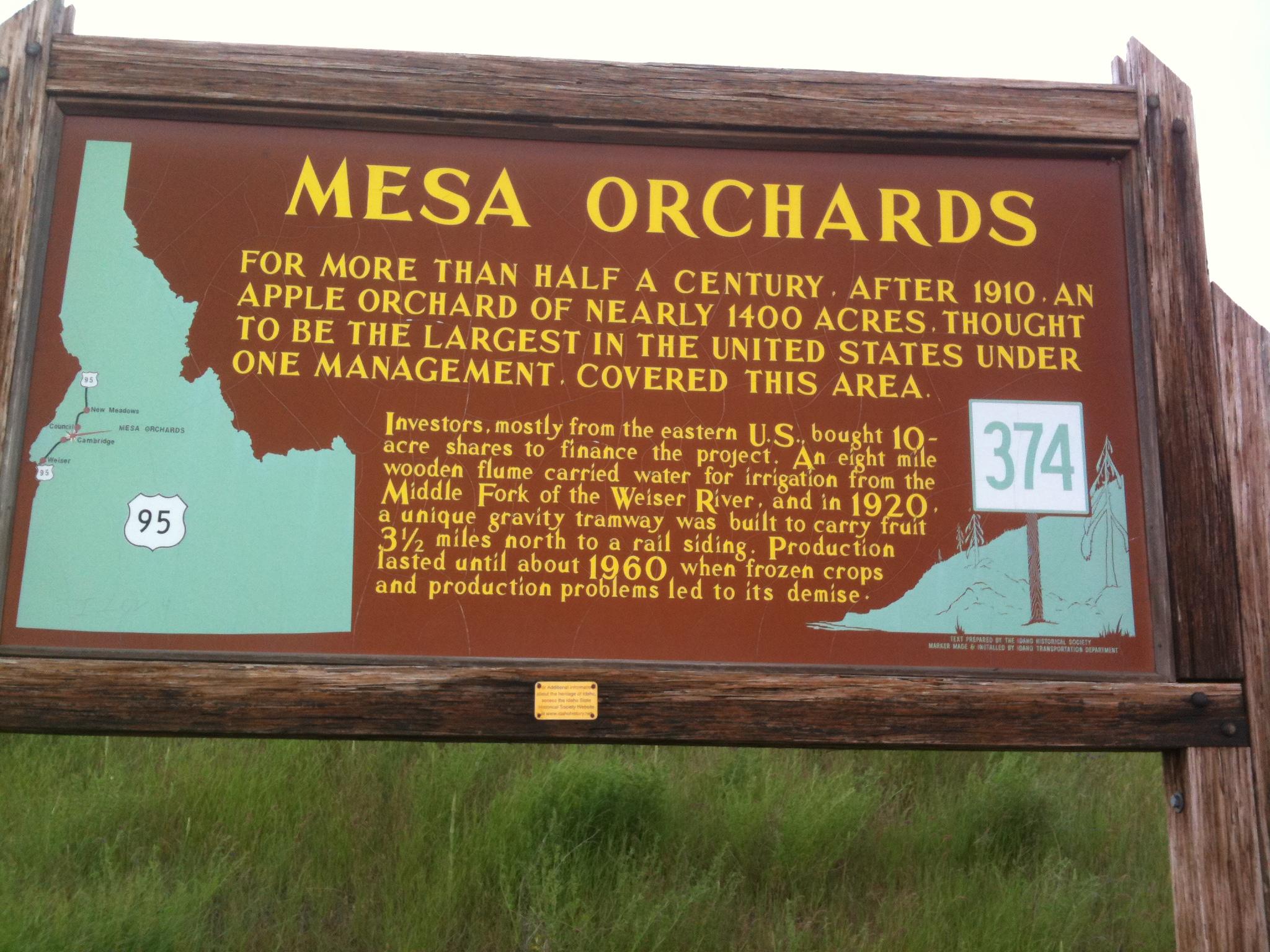 Mesa Orchards