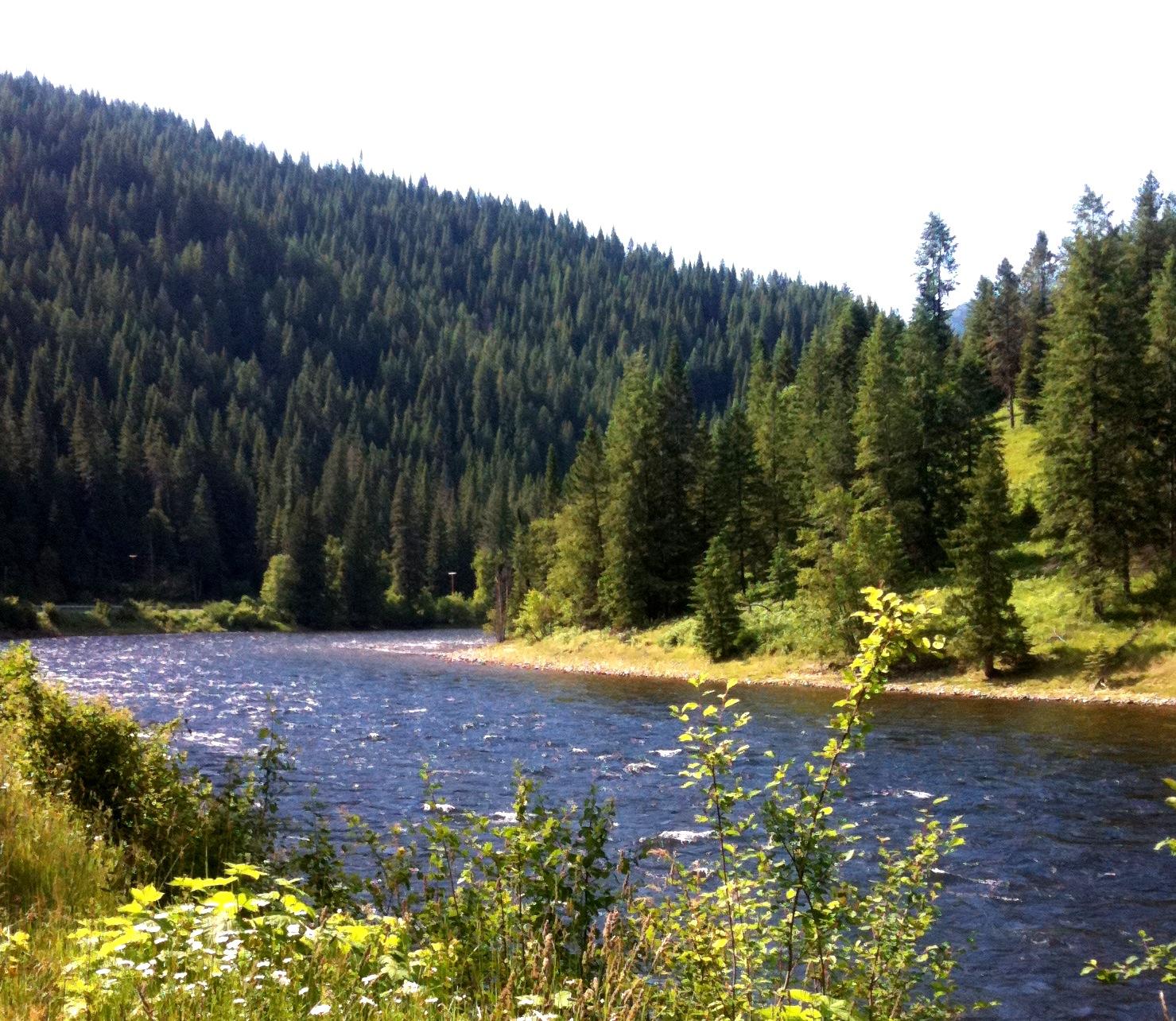 The Lochsa River