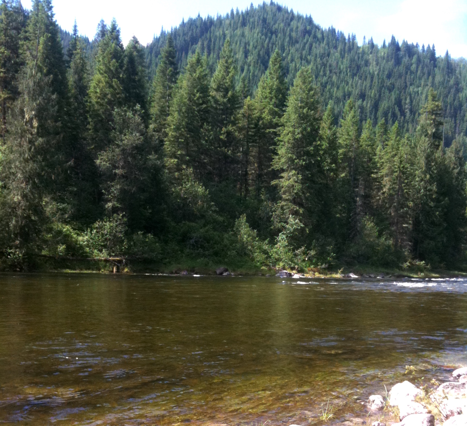 The Clearwater river