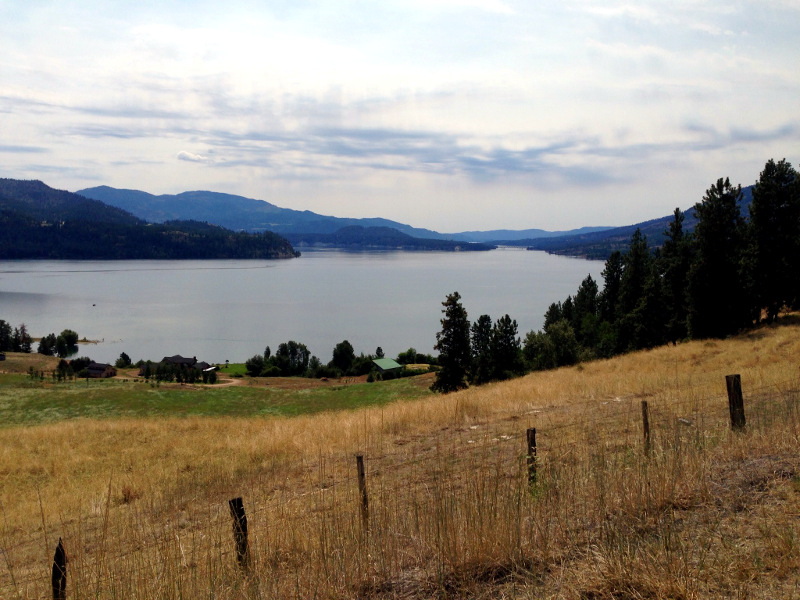 The Columbia River at Lake Roosevelt.