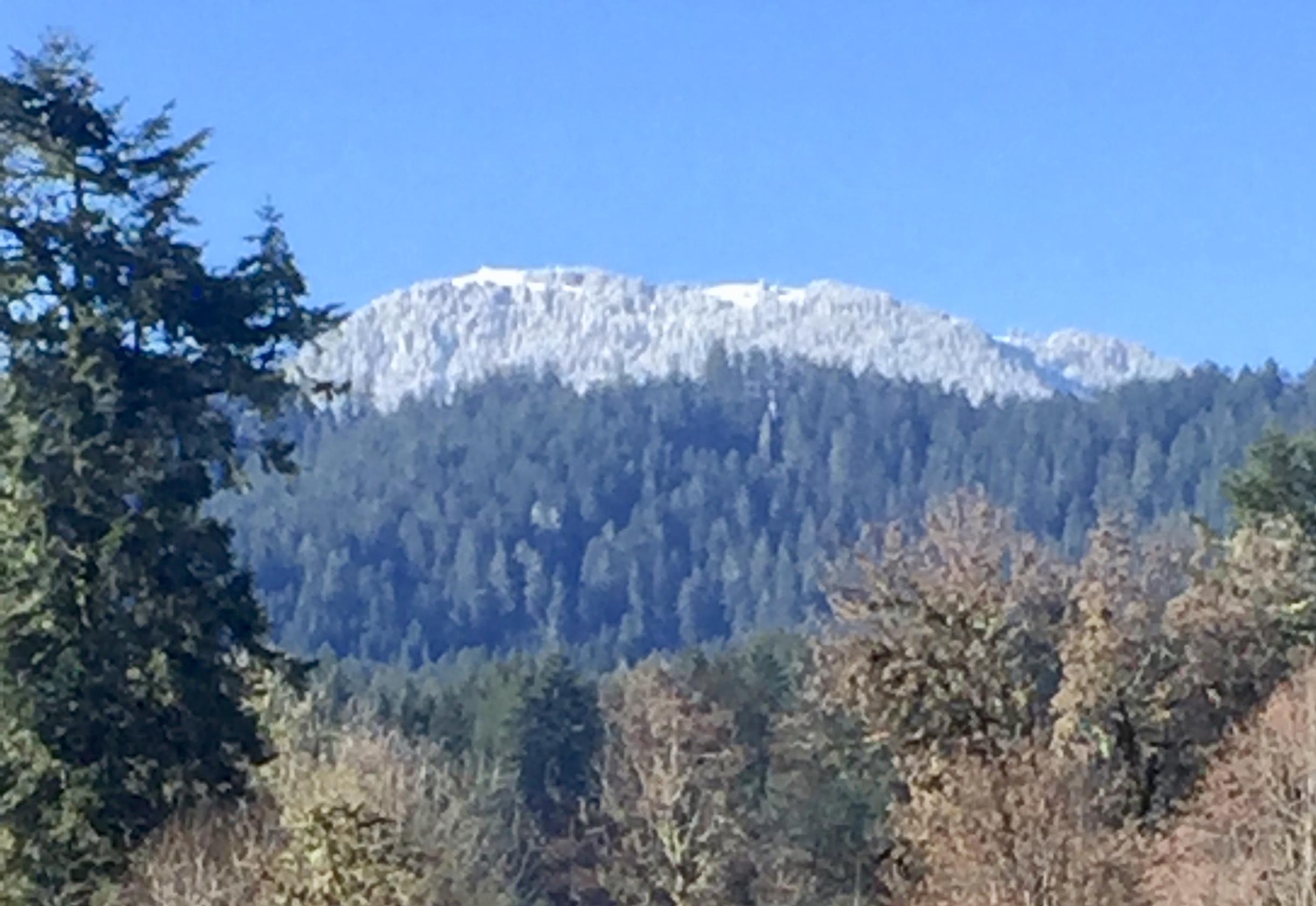 Mary's Peak
