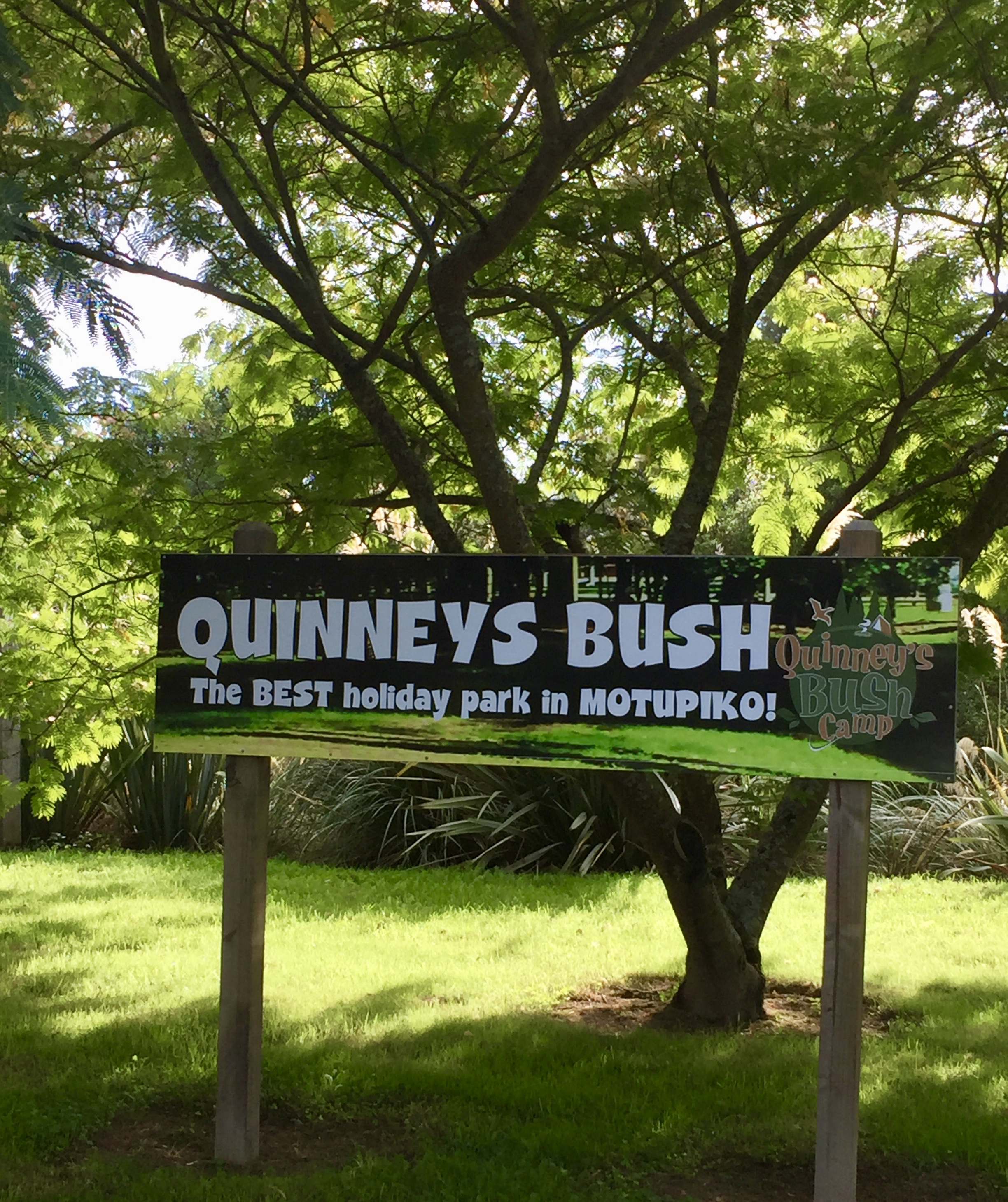 Quinney's Bush Camp