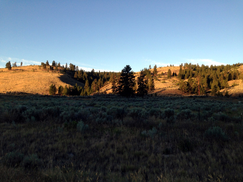 Early light in  the Okanogan Highlands.