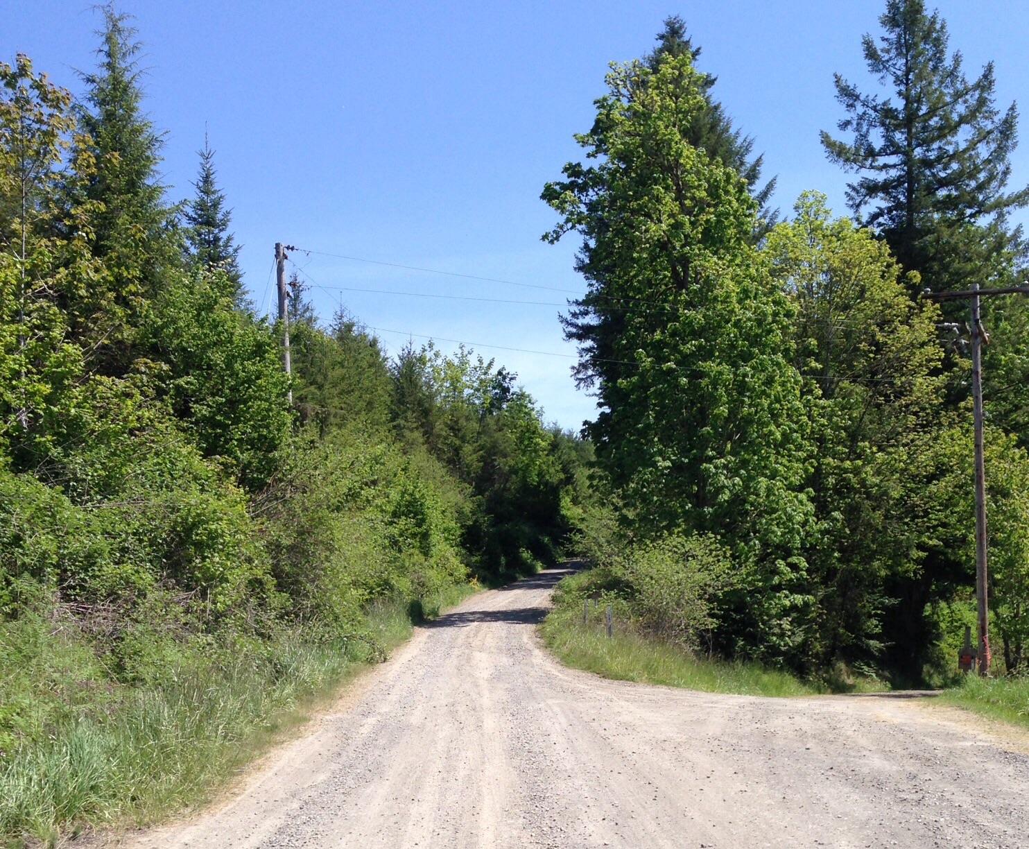Fish Hatchery Road