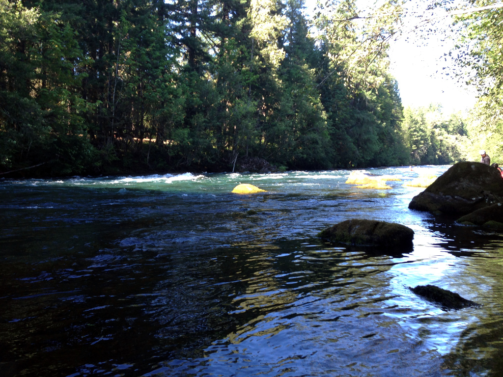 The McKenzie River