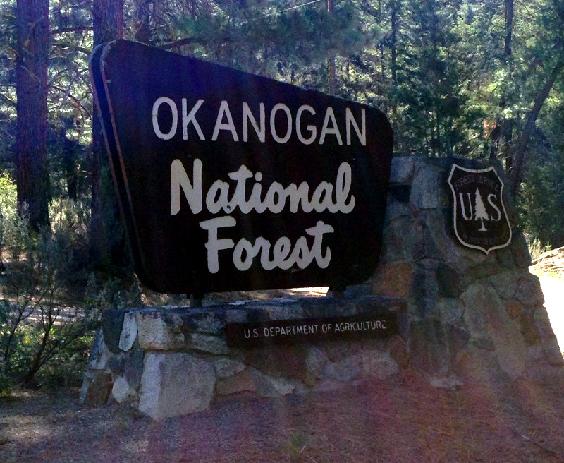Okanogan National Forest