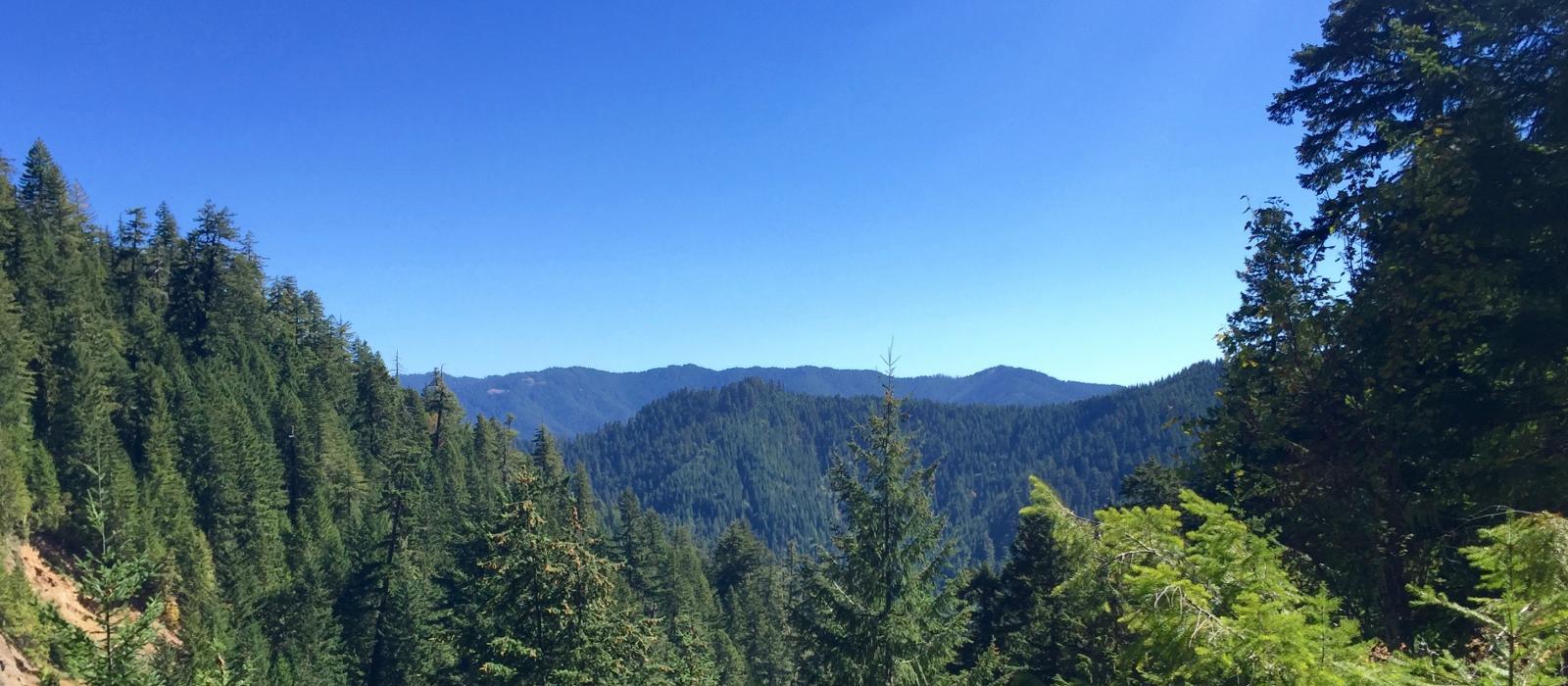 Southern Cascades