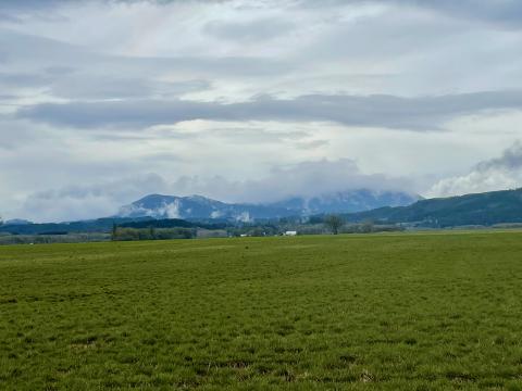 Clouds on Mary's Peak